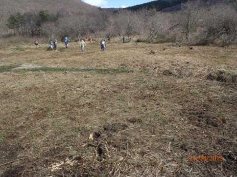 千町原野焼き&霧ケ谷湿原保全・環境整備活動 085