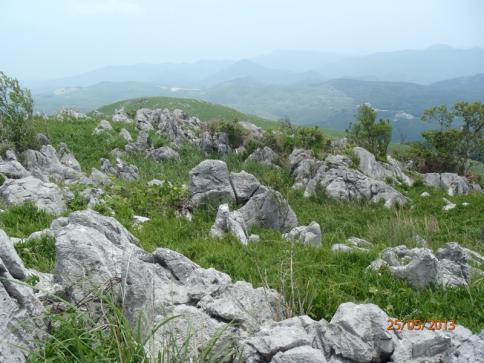 龍護峰~西の西山 023