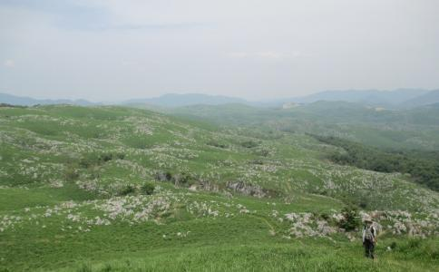 龍護峰~西の西山 M 030-001