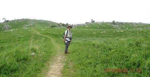 龍護峰~西の西山 M 011-001
