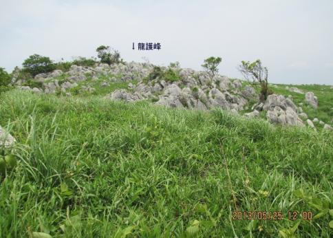 龍護峰~西の西山 M 018-001