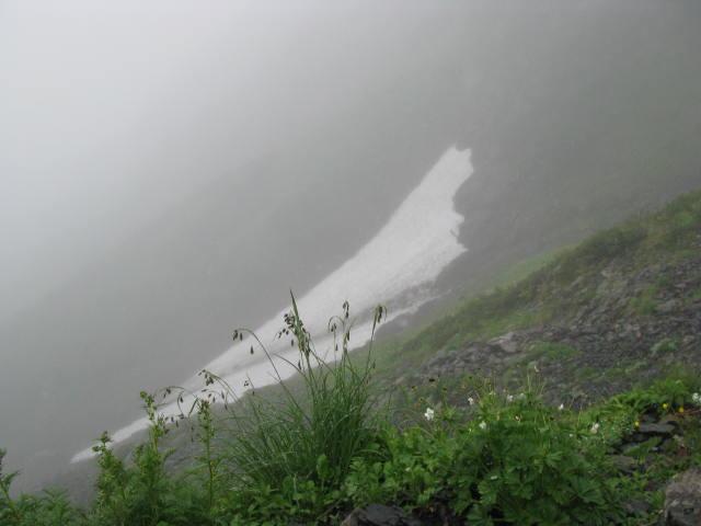 IMG_6538ertert赤石岳