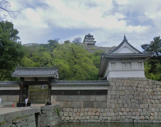 丸亀城お堀と天守閣