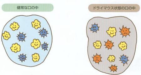image-11a.jpg