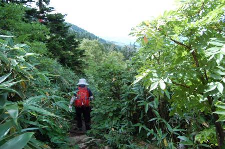2毛無岱への山道33