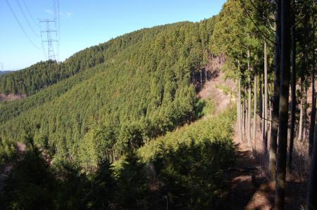14官公山へ
