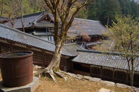 23永平寺・法堂から大庫院を見る
