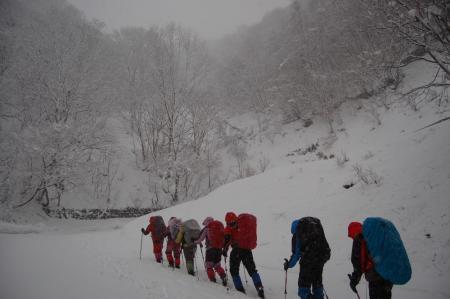 4林道歩き