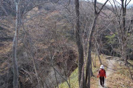 3薬師岳への尾根