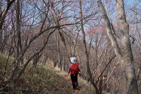 13夕日岳への尾根