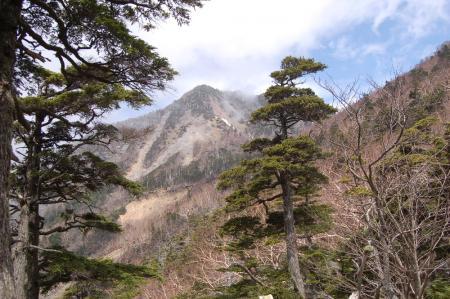 37女峰山が