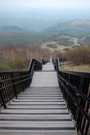 60長い階段