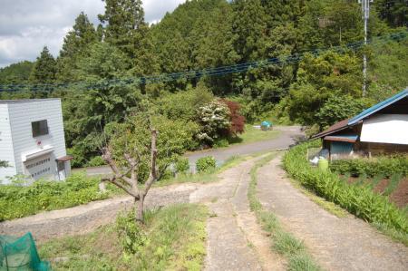 52武生林道へ出る