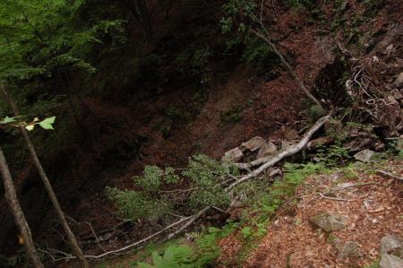 36黒檜岳・下山路