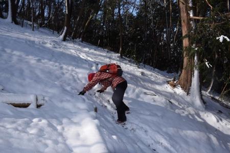 29ハイキングコース