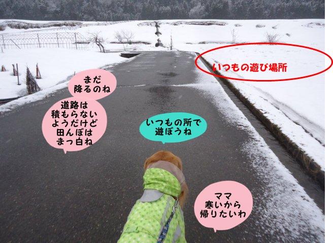 002_20120319102658.jpg