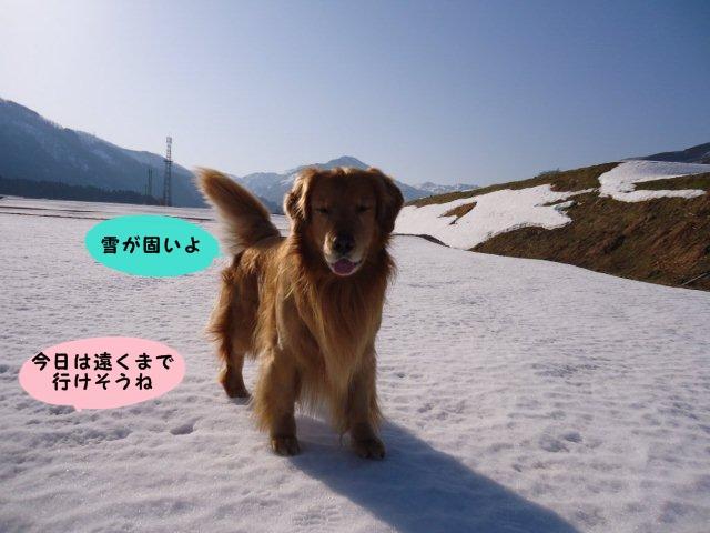 002_20120329141237.jpg
