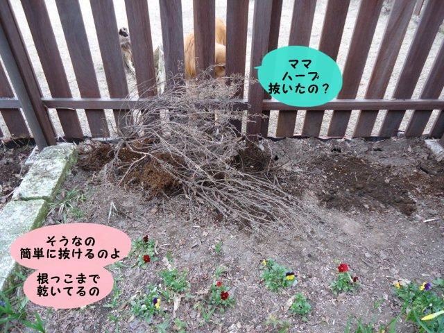 002_20120421210356.jpg