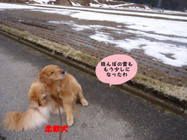 003_20120401202603.jpg