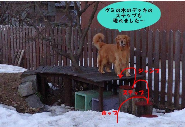 003_20120407152420.jpg