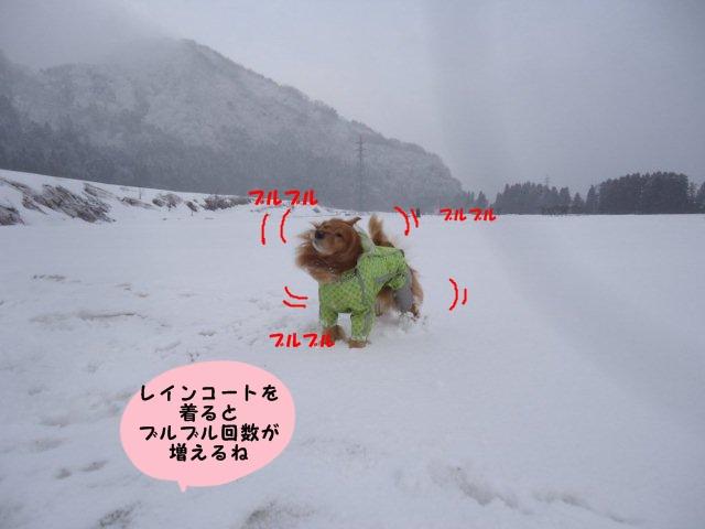 004_20120319102707.jpg