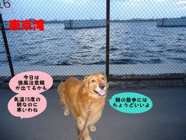 004_20120401134422.jpg