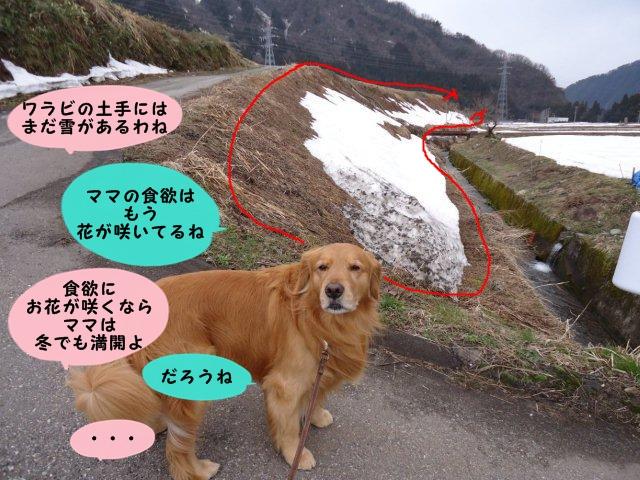 004_20120401202621.jpg