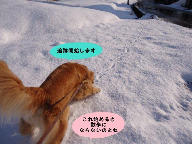 006_20120327093234.jpg