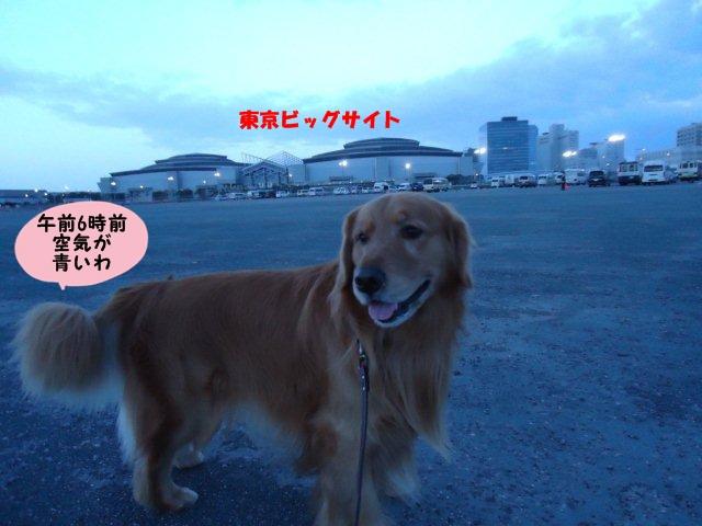 006_20120401134430.jpg