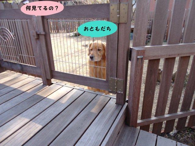 008_20120421210141.jpg