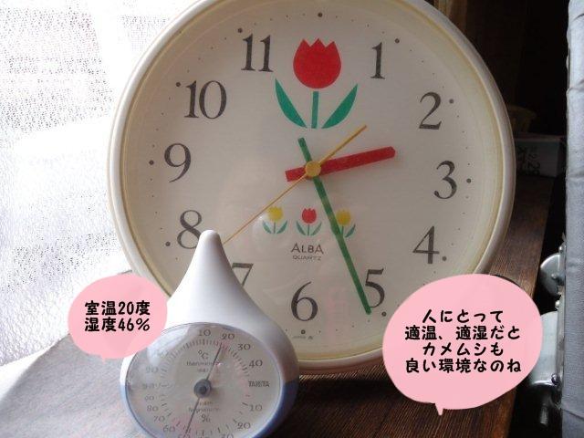 010_20120330145100.jpg