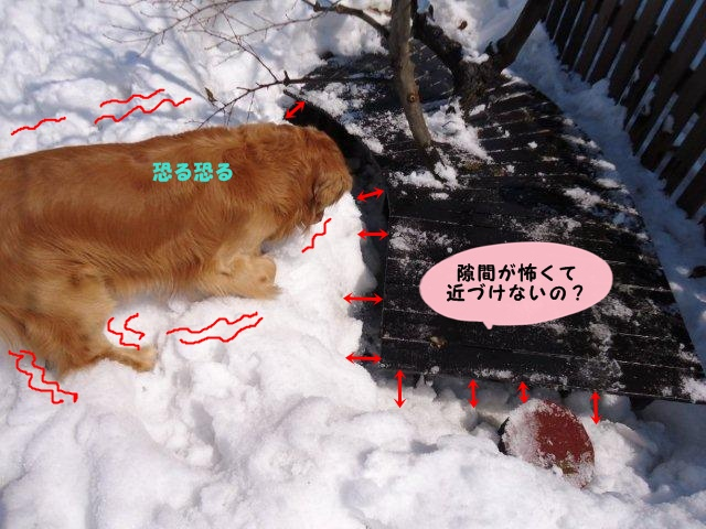 022_20120327125040.jpg