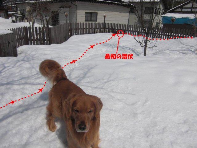 035_20120326131511.jpg