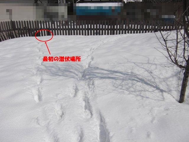 036_20120326131521.jpg