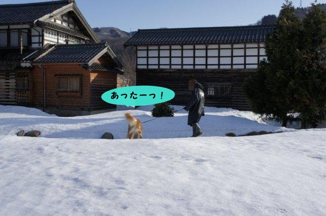 051_20120320180523.jpg