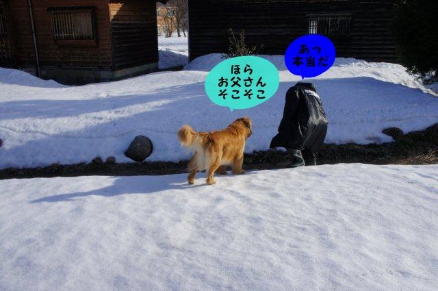 052_20120320180532.jpg
