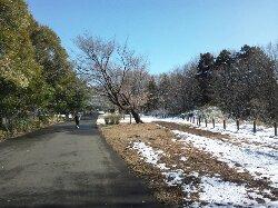ホームコース小山内裏公園