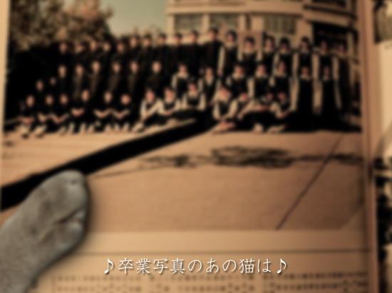 卒業写真4