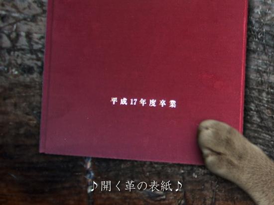 卒業写真3