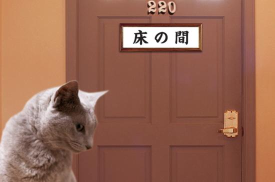 東猫イン14