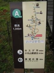 kirihuri140920-110.jpg