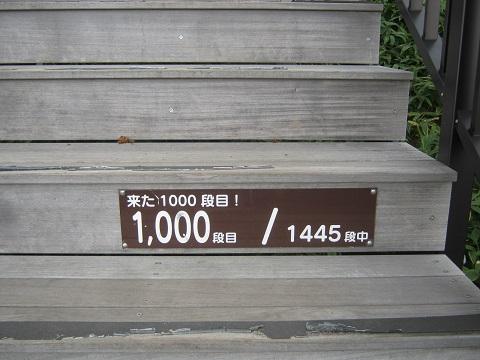kirihuri140920-127.jpg