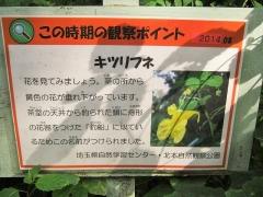 kitamoto140907-123.jpg