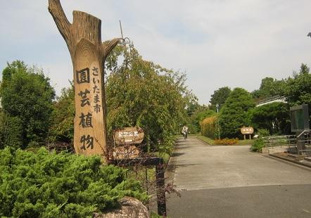 oosaki140923-102.jpg