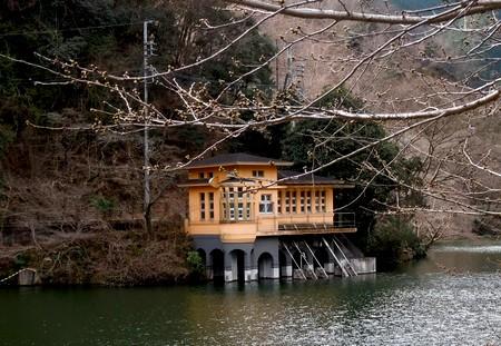 鎌北湖の桜はまだまだ
