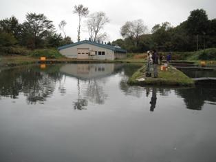 2011-10-1-01.jpg