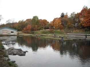 2011-10-16-1.jpg