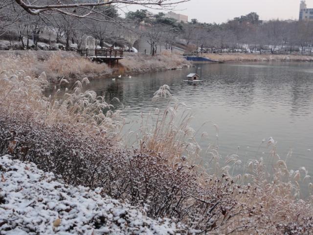 2013年12月14日 蚕室石村湖
