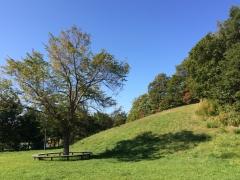公園はじの丘