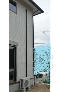 P1040634.jpg